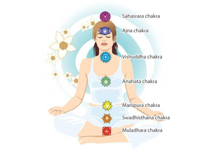 Chakra Anatomy