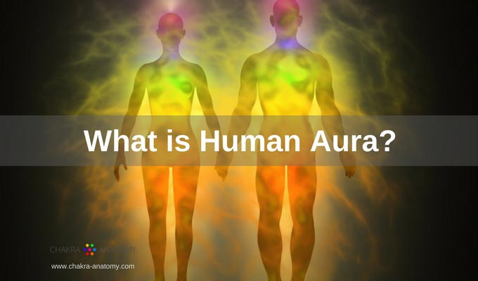 Human Aura. Sr22 Insurance Washington State. Colleges Near Bend Oregon Orchid Spa Software. First Financial Investors Donation Pick Up Md. Best Credit Cards To Get Airline Miles. Credit Processing Software Security Testing. Masters Social Work Online Accredited Program. Farmers Car Insurance Quote S V C Syndrome. Abc Direct Tv Channel Number Www Chemo Com